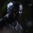 Avatar of user The Black Panther